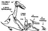 Imprimer le coloriage : Pterodactyle, numéro 277058