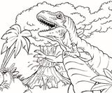 Imprimer le coloriage : T-rex, numéro 783e0776