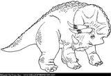 Imprimer le coloriage : Triceratops, numéro 230997