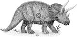 Imprimer le coloriage : Triceratops, numéro 261534