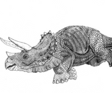 Imprimer le coloriage : Triceratops, numéro 758625