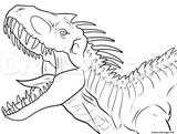 Imprimer le coloriage : Vélociraptor, numéro 11fbb3be