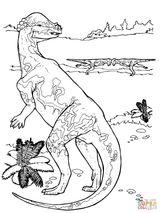 Imprimer le coloriage : Vélociraptor, numéro 48720a15