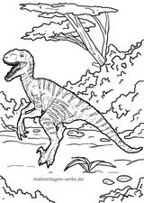Imprimer le coloriage : Vélociraptor, numéro 6ccde14f