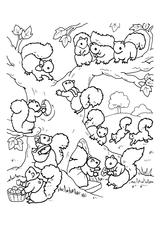 Imprimer le coloriage : Ecureuil, numéro 339635