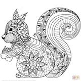 Imprimer le coloriage : Ecureuil, numéro b2f6b35d