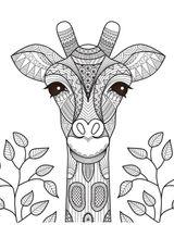 Imprimer le coloriage : Girafe, numéro 16491269