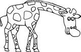 Imprimer le coloriage : Girafe, numéro 264497af