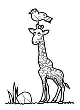 Imprimer le coloriage : Girafe, numéro 321f2903
