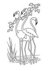 Imprimer le coloriage : Girafe, numéro 5ed21fb6