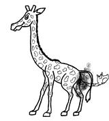 Imprimer le coloriage : Girafe, numéro 754221