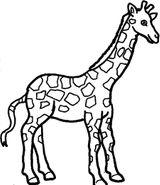 Imprimer le coloriage : Girafe, numéro e6dbf436