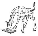 Imprimer le coloriage : Girafe, numéro fcc6dfc5