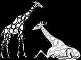 Imprimer le coloriage : Girafe, numéro fd023a92