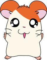 Imprimer le dessin en couleurs : Hamster, numéro 21072