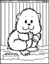 Imprimer le coloriage : Hamster, numéro 24717