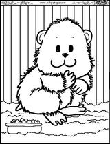 Imprimer le coloriage : Hamster, numéro 26768
