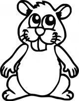Imprimer le coloriage : Hamster, numéro 3407