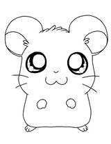 Coloriages imprimer animaux hamster page 10 - Hamster russe panda ...