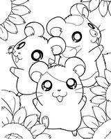 Imprimer le coloriage : Hamster, numéro 79a7db57