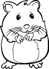 Imprimer le coloriage : Hamster, numéro b71de356