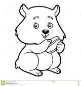 Imprimer le coloriage : Hamster, numéro d32b974
