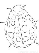 Imprimer le coloriage : Insectes, numéro 130358