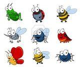 Imprimer le dessin en couleurs : Insectes, numéro 203152