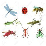 Imprimer le dessin en couleurs : Insectes, numéro 217c13b5