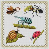 Imprimer le dessin en couleurs : Insectes, numéro 24782
