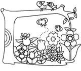 Imprimer le coloriage : Insectes, numéro 2b613aa6