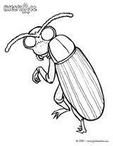 Imprimer le coloriage : Insectes, numéro 5b634a3b