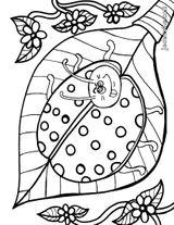 Imprimer le coloriage : Coccinelle, numéro 130416