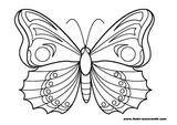 Imprimer le coloriage : Papillon numéro 130617