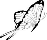 Imprimer le coloriage : Papillon, numéro 25863