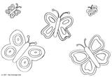 Imprimer le coloriage : Papillon, numéro 25872