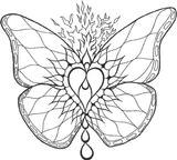 Imprimer le coloriage : Papillon, numéro 687031