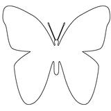 Imprimer le coloriage : Papillon, numéro 760192