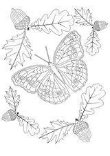 Imprimer le coloriage : Insectes, numéro a22b9808