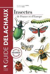 Imprimer le dessin en couleurs : Insectes, numéro da5338b1