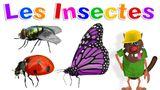Imprimer le dessin en couleurs : Insectes, numéro df0793de