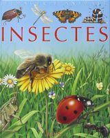 Imprimer le dessin en couleurs : Insectes, numéro f27c5f45