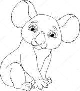 Imprimer le coloriage : Koala, numéro 4e07b542