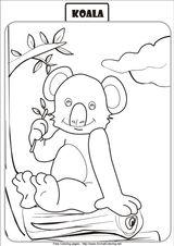 Imprimer le coloriage : Koala, numéro 55e8903