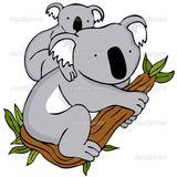 Imprimer le dessin en couleurs : Koala, numéro 602433