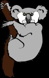 Imprimer le dessin en couleurs : Koala, numéro 602436