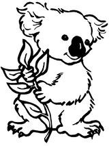 Imprimer le coloriage : Koala, numéro 603426