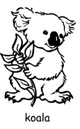 Imprimer le coloriage : Koala, numéro 605834