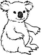 Imprimer le coloriage : Koala, numéro 613634