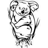 Imprimer le coloriage : Koala, numéro 615019